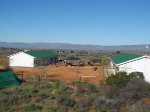 Calitzdorp ist ca. 500 Kilometer von Kapstadt entfernt, umgeben von großen Obstplantagen.